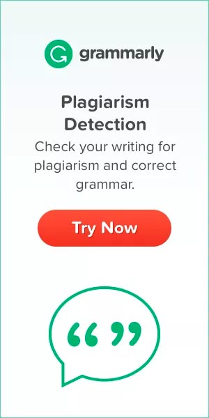 Grammarly Coupon Code Skyline